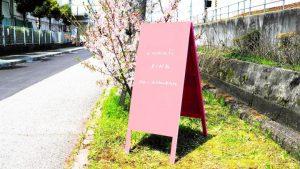 桜色・A型黒板(ピンク色)のアイキャッチ画像
